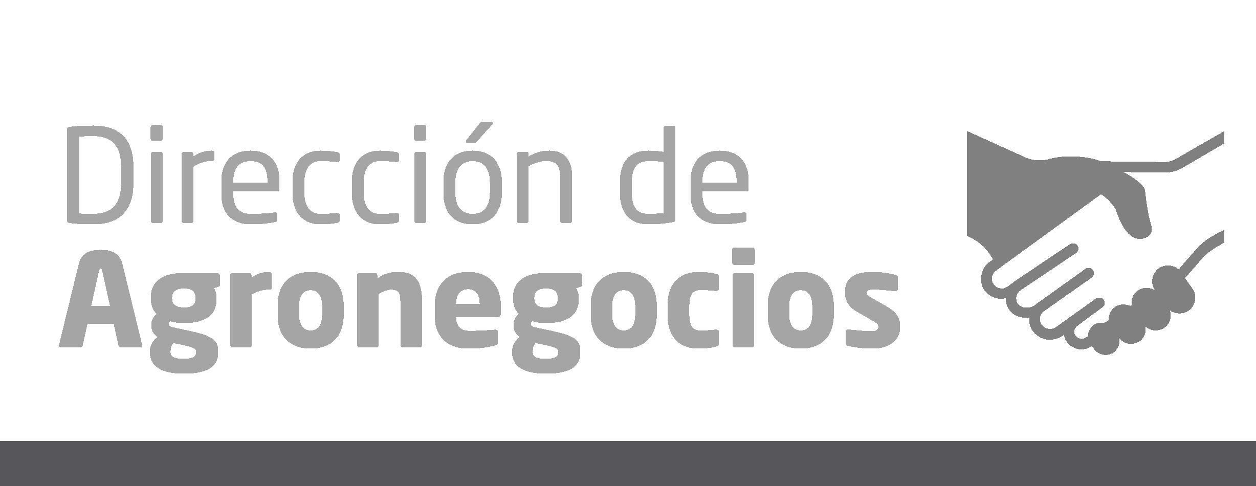 servicios_web_grandes-01