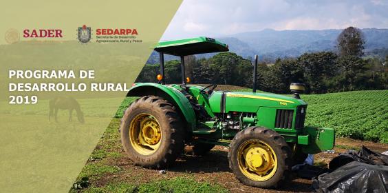 Programa de Desarrollo Rural 2019