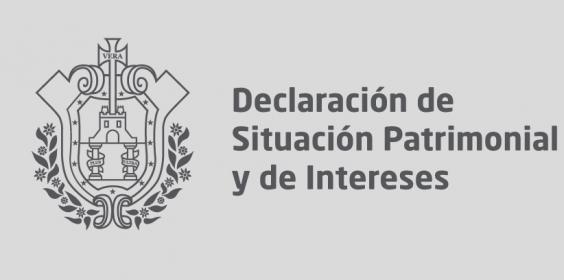 Declaración de Situación Patrimonial y de Intereses