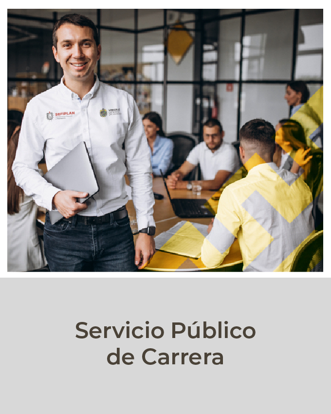 Servicio público de carrera
