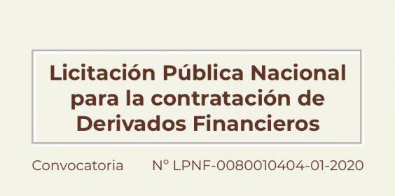 Licitación Pública LPNF-0080010404-01-2020