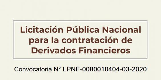 Licitación Pública LPNF-0080010404-03-2020