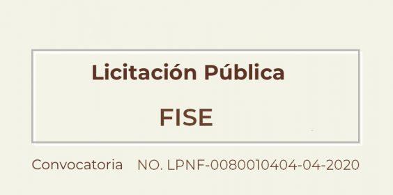 Licitación pública para el FISE