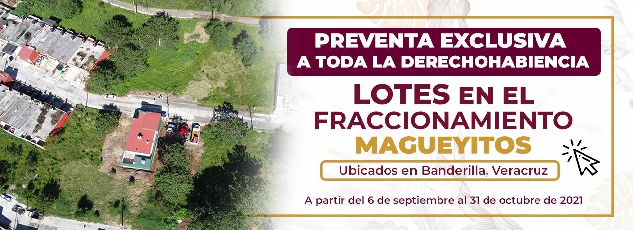 PREVENTA EXCLUSIVA MAGUEYITOS