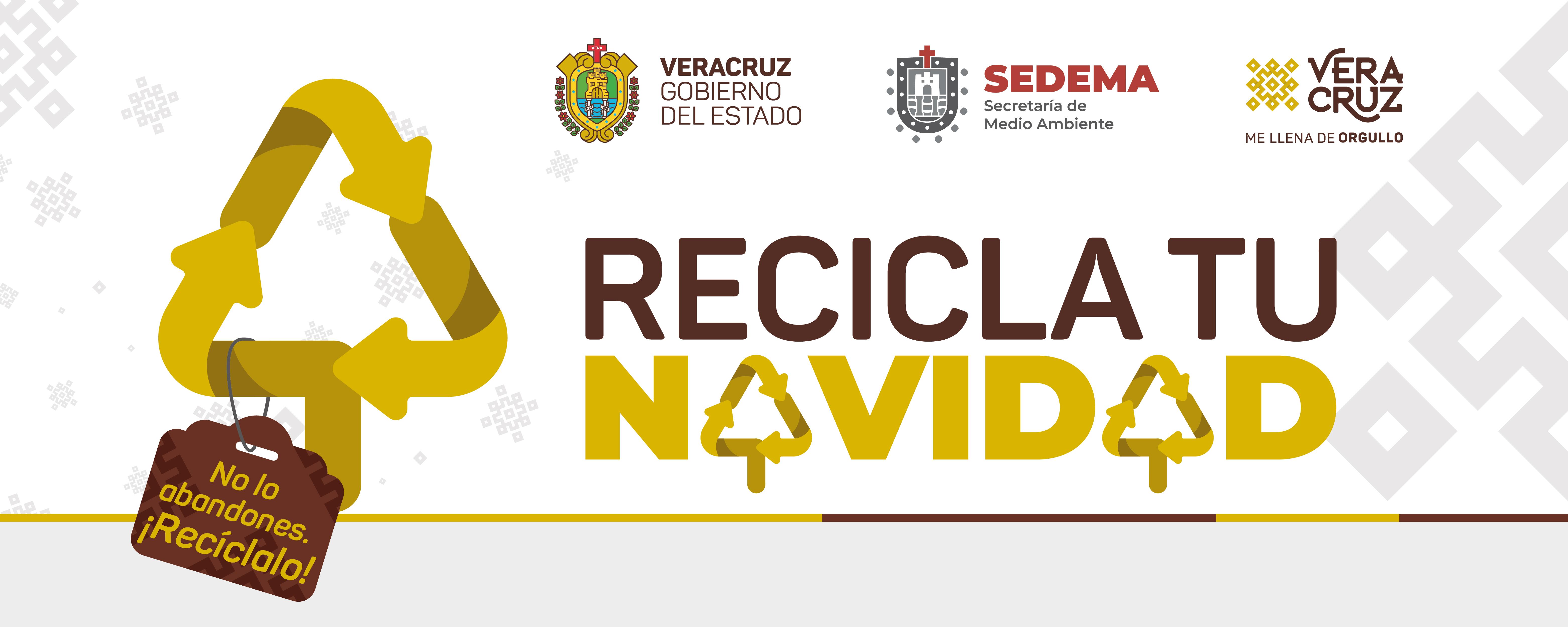 Calendario De Verificacion Fisico Mecanica 2019.Sedema