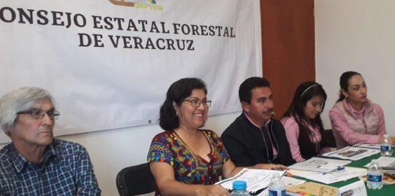Integra SEDEMA Comités Técnicos para acciones de remediación en Las Vigas