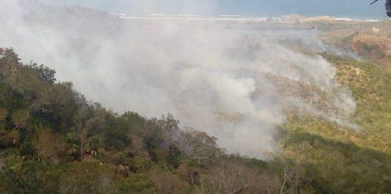 Trabaja SEDEMA en la restauración de zonas afectadas por incendios