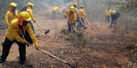 Mi reconocimiento para todas las personas que participan como combatientes en el incendio de Alto Lucero
