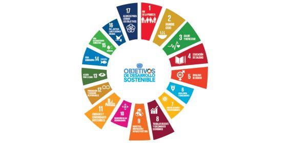 Veracruz asiste a la Tercera Sesión de Capacitación sobre la instrumentación de la Agenda 2030