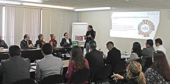 Reuniones con Comités del Consejo Veracruzano de la A2030