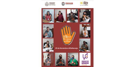 En conmemoración del Día Internacional de la Eliminación de la Violencia contra la Mujer