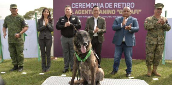 """Con honores, retira Fuerza Civil al agente canino """"Gadafi"""", tras ocho años de servicio."""
