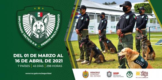 Diplomado Internacional Táctico K-9 Perros Multipropósito