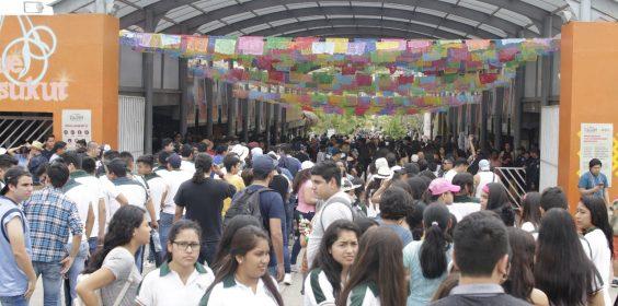 Cumbre Tajín 2019 genera alta ocupación a hoteles y moteles del norte de Veracruz