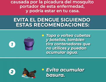 Sin mosquitos NO HAY dengue!