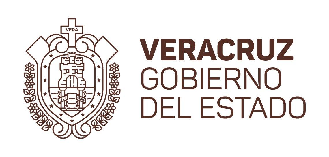 GRUPO DE COORDINACIÓN VERACRUZ Comunicado del 4 de agosto de 2017