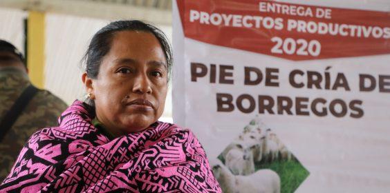 Lleva DIF EstatalProyectos Productivosa Huayacocotla