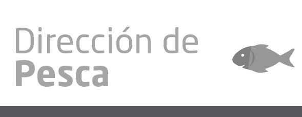 servicios_web_grandes-02